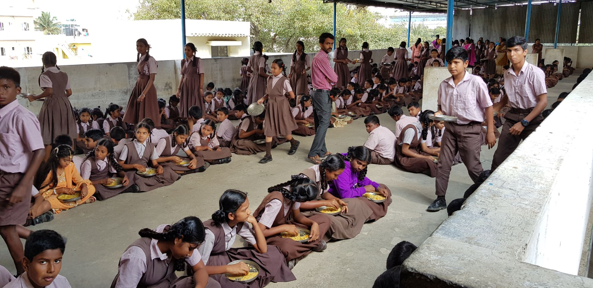 Freedom Through Education